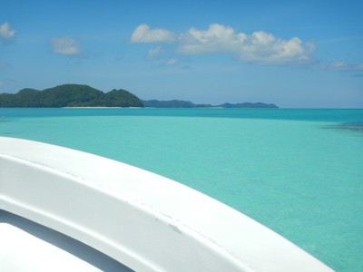 Imagine having this view every day!; I was ready to buy a houseboat and just ride around the gorgeous islands of Palau