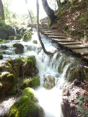 Plitvice is the largest national park in Croatia at 300 square kilometers; it is centrally located 2 hrs from Zagreb, Split and Zadar with many tourists seeing it as a day trip