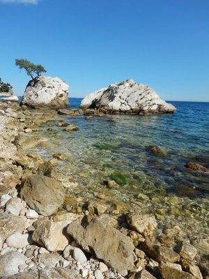 The rocky beach was a challenge to navigate; I snorkeled but saw very few generic-looking fish; the visibility was pretty good though