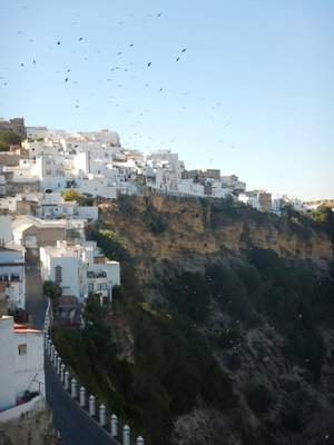 Like a scene from The Birds; Arcos is one of the most famous of Andalucia's pueblos blancos or white villages