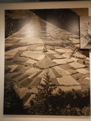 This large photo shows a patchwork of fields atop a ridge in France; the exhibition was almost like a National Geographic view of people's lives at the time