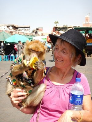 Linda wanted her photo taken with one of the Barbary macaques in the main square; there are no set prices and the money she gave the macaques owner was considered inadequate and he gave us some words
