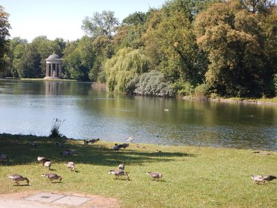 The neo-Classical Apollo temple was erected in 1865; the geese and ducks were thriving as were the huge catfish in the lake