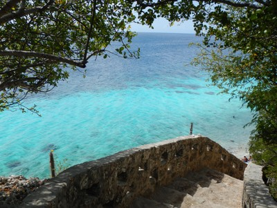 Our house had a private ladder at the bottom of these steps which we used often to go snorkeling; the week was valuable quality time with great friends!