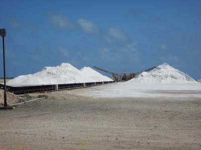 Much of Bonaire's southern half has been made into a giant system of ponds and pools which evaporate seawater to produce salt; presently operated by Cargill, Bonaire's solar salt works produce 400,000 tons of industrial grade salt per year