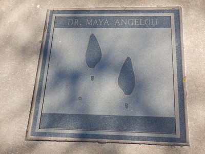 The International Civil Rights Walk of Fame was created to give recognition to those courageous soldiers of justice who sacrificed and struggled to make equality a reality for all