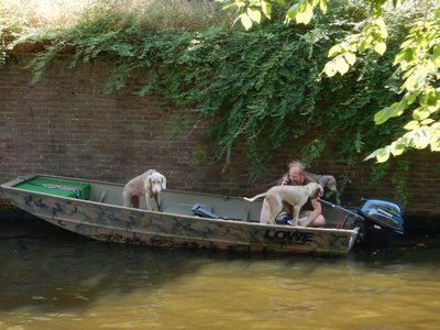 With weimaraners originating in Germany it should be no surprise that they are in the Netherlands; the dogs wanted to get the show on the road and seemed impatient waiting for the skipper to get off the phone