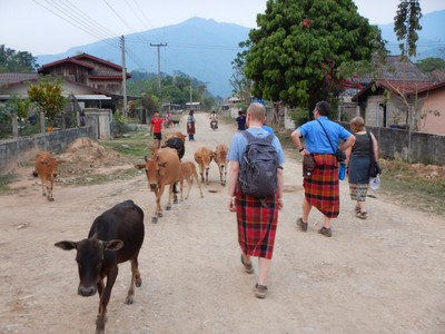 It apparently wasn't at all unusual to pass cows on the road in the village where we had our homestay; we were divided up with local houses each taking two of us (Jonathan and I lucked out to have a house with a real toilet)
