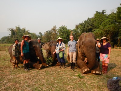 Four of us spent an enjoyable afternoon at an elephant sanctuary; Laos has banned the use of elephants as beasts of burden so owners no longer wanted them hence the need for sanctuaries