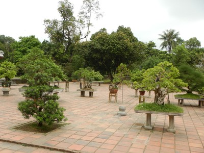Bonsai terrace at Thien Mu Pagoda; our overnight train from Hanoi was horrendous as it was loud, jolting and impossible to sleep