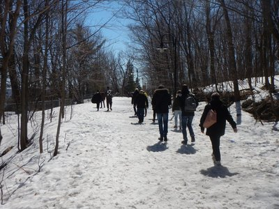 The hiking trails are popular with snowshoers in the winter; there are plenty of great places to enjoy a picnic in any season