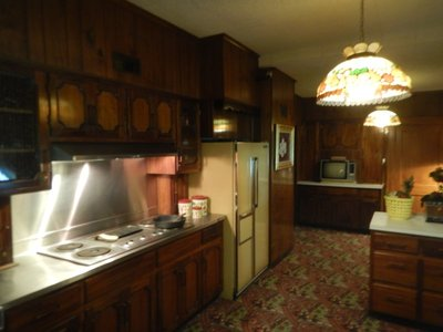 The kitchen looked like a darker version of the Brady Bunch kitchen; it's surprising Elvis chose such a modest house since he was already a huge star when he purchased Graceland