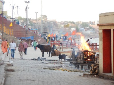 Bodies are being cremated at this ghat; like other large Indian cities, Varanasi is loud, crowded and chaotic; the locals seemed used to it but for me it was overwhelming