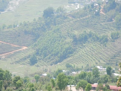 The Nepalese countryside is full of terraced rice paddies; the hard-working locals tend to plant and harvest crops by hand on their small parcels of arable land