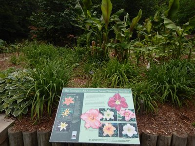 I missed all the spring colors; there is a 6.5 acre Garden of Native Plants with 900  species and an 18 acre Asiatic Arboretum
