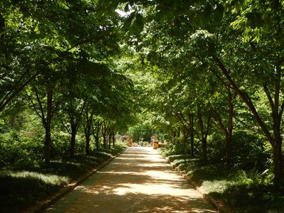 The gardens are free to enjoy; parking was $1 for every 30 minutes; there are more than 5 miles of paths through the gardens