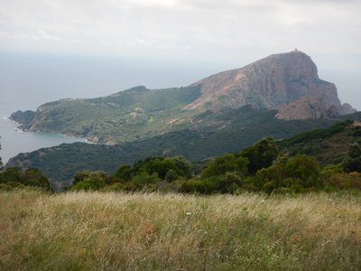 You can barely see the Genoese tower atop Capu Rossu; at the end of the peninsula, the terrain had changed drastically to forests interspersed with grasslands