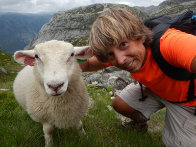 This lamb really enjoyed having his neck scratched; I enjoyed the break hiking back down