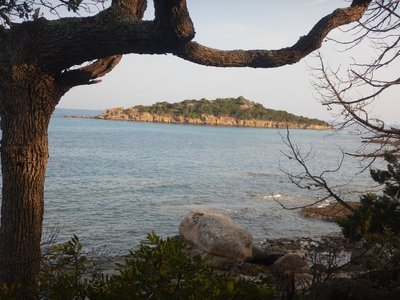 Ile de Farina; there were stark differences in water temperature as I swam around the island