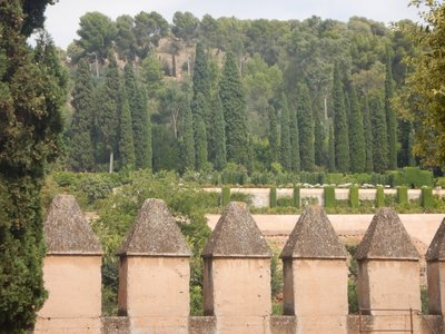 Tall, centuries-old cypress trees accentuate the buildings; my parents enjoyed visiting the Alhambra several years ago
