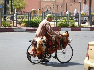Marrakech seemed like a very Western city and even has a female mayor; at times though you were reminded that this is still Africa