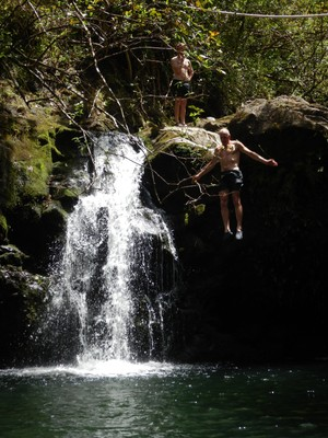 Several days later, when Lee and I were returning from Hana, Kanahuali'i Falls was a muddy torrent and not something you would have wanted to jump into