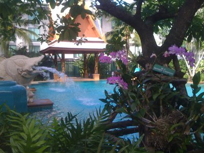 My morning swim in the airport hotel (Bangkok)