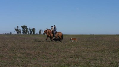 20120610_Uruguay_004.jpg