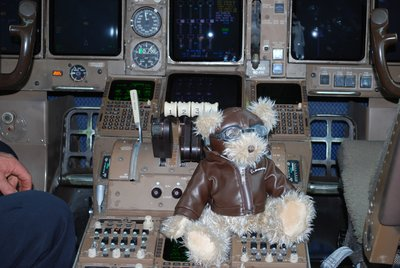 Bo on the flight deck showing them how it should be done - Well he is a Boeing Bear!