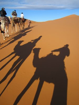 MoroccoErg..6__480x640_.jpg