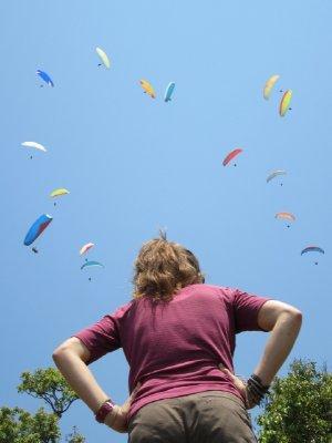 Robin_Watc..gliders.jpg
