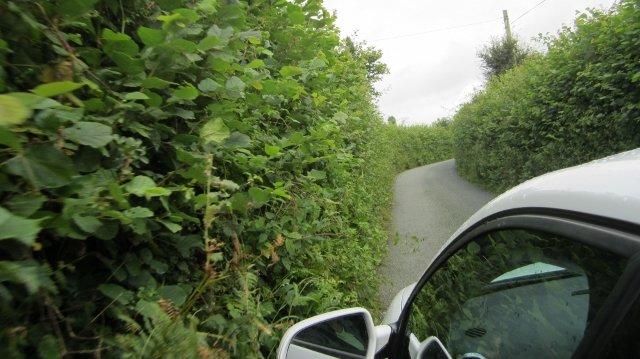large_WalesLakeV..2__640x359_.jpg
