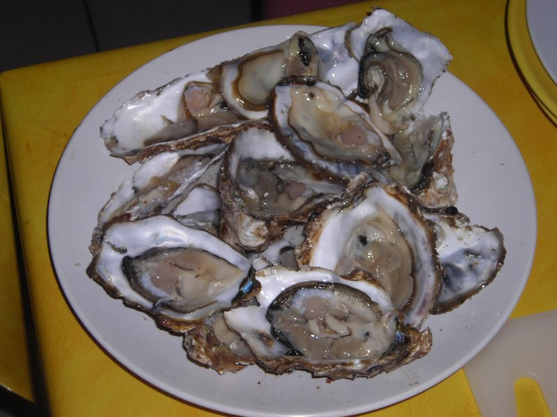 Oyster close-up