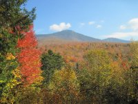 White Mountain National Forest--NH