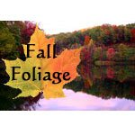 Fall Foliage Pictures