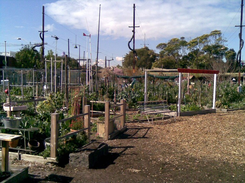 Vegies - Community garden in St Kilda