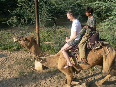 The Camel Rises