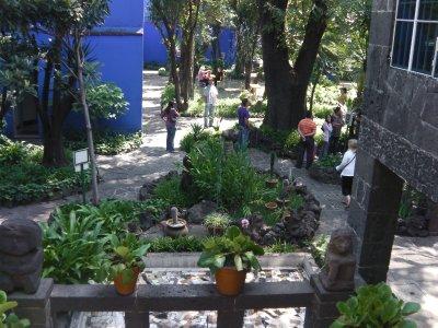 Frida courtyard