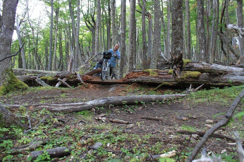 log crossing