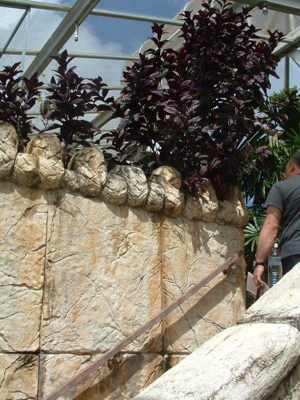 Botanical Gardens, Nevis, West Indies, May 2011 (4)