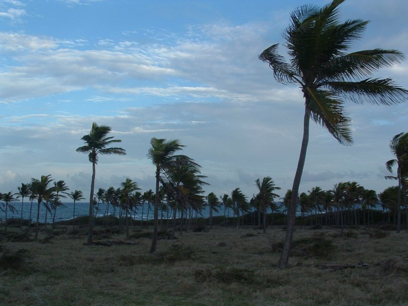 Windward side of Nevis, West Indies