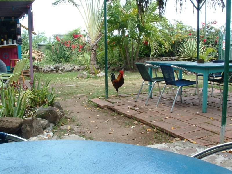 Charlestown, Nevis, West Indies
