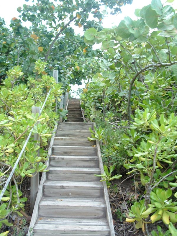 Nevis, West Indies, May 20, 2011 Stairs to Black Sand Cove