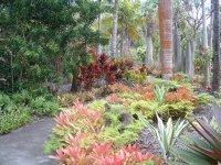 Botanical Gardens, Nevis, West Indies, May 2011 (38)