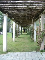 Botanical Gardens, Nevis, West Indies, May 2011 (43)