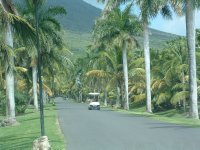 Nevis, West Indies, May 20, 2011 (2)