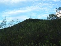 Saddle Hill Hike, Nevis, West Indies May 2011 (18)
