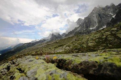 Lower Mont Blanc