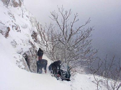 febr2011.jpg