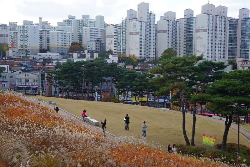 large_suwon018.jpg